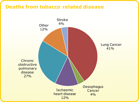an analysis of the liability of the tobacco industry for the illness and death caused by smoking Tobacco addiction contributes to approximately 438,000 deaths in the united states each year2, with smoking cigarettes constituting one of the most common preventable causes of death.